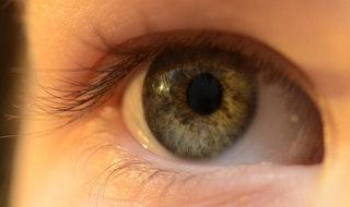 A kontaktlencse viselése, használata